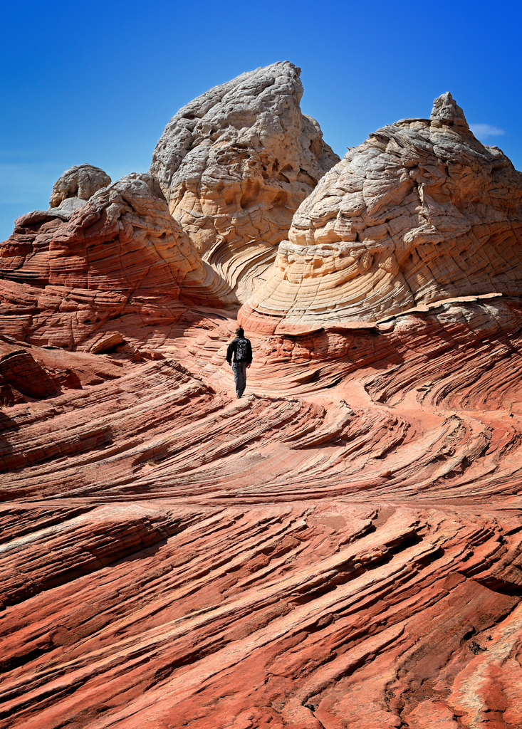 White Pocket Wilderness Area (Paria Canyon, AZ)