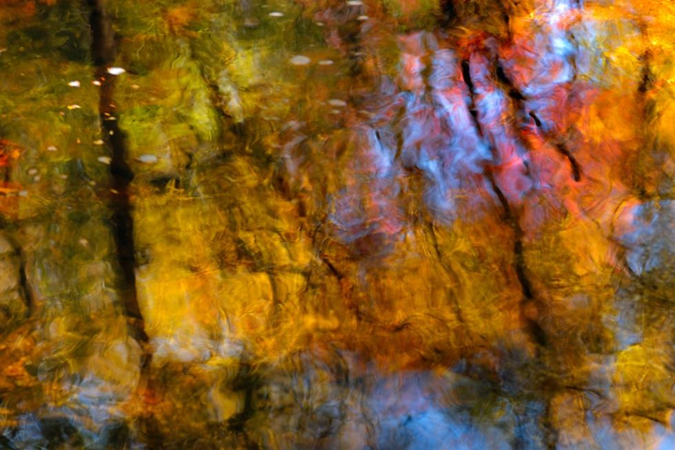Autumn Glass (Lindy Run, WV)